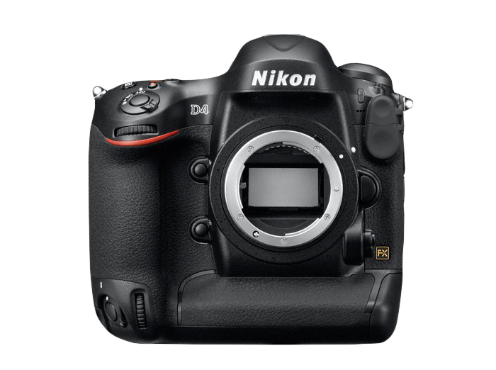 Nikon D4 overview, wildlife photographer Richard Costin