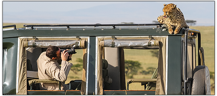 photography workshop tours / safaris