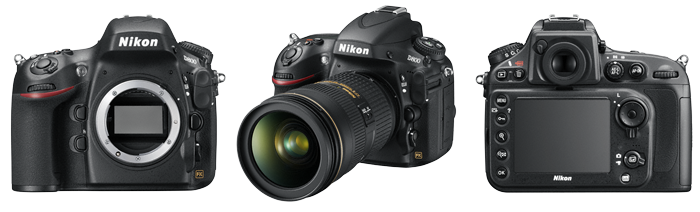 Nikon D800 review - Body - Richard Costin Wildlife Photographer