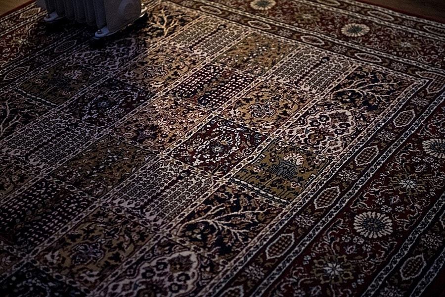 RichCostin_NikonD5Review_CarpetFIT