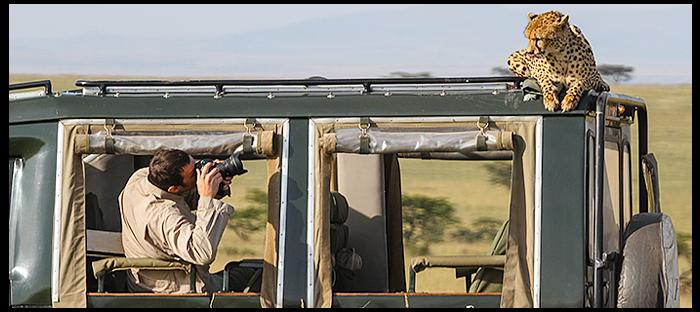 photography workshop tours / safaris