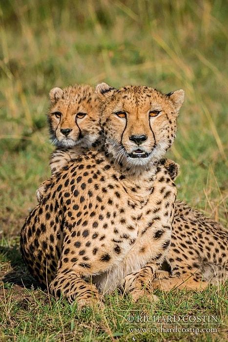 RichCostin_AfricaLiveBlog_2014a_10___0012