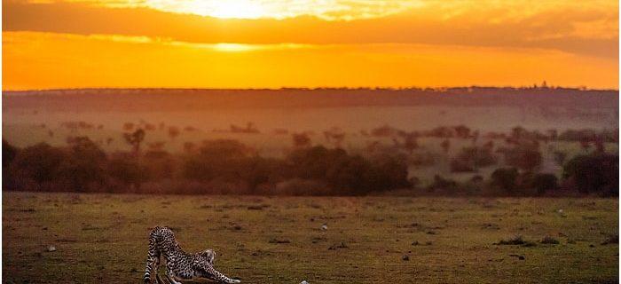 Africa Live Sept 2014: 03 An eventful morning