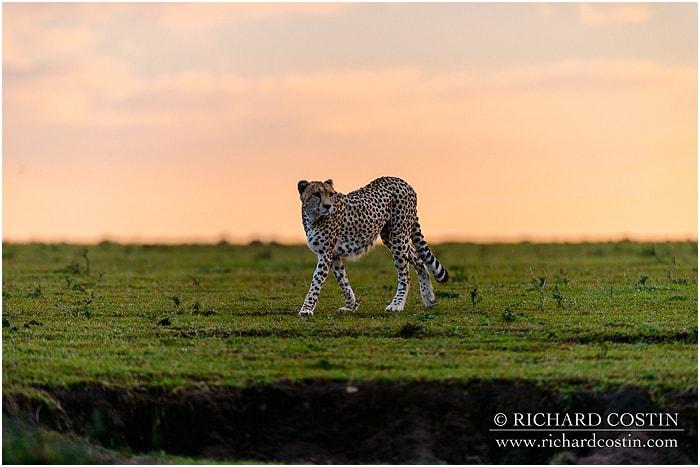 RichCostin_AfricaLiveBlog_2014b_03___0005