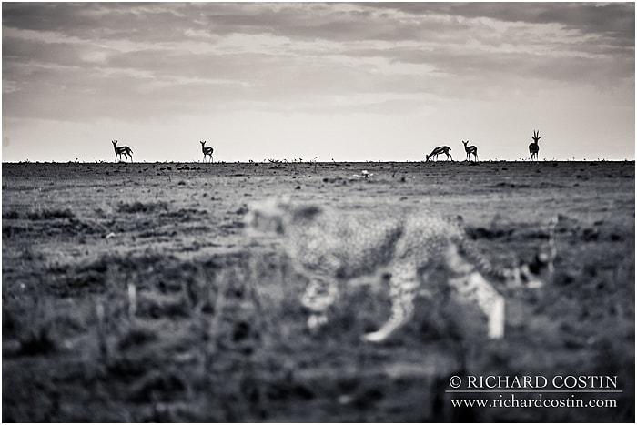 RichCostin_AfricaLiveBlog_2014b_03___0007