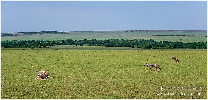 RichCostin_AfricaLiveBlog_2014b_03___0031