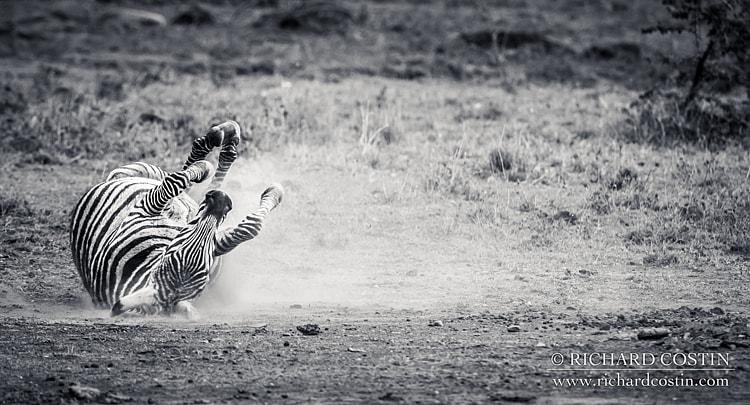 RichCostin_AfricaLiveBlog_2014b_04___0018
