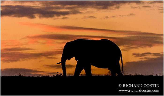 RichCostin_AfricaLiveBlog_2014b_05___0001