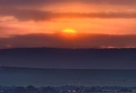 Africa Live: 12, Sky on fire
