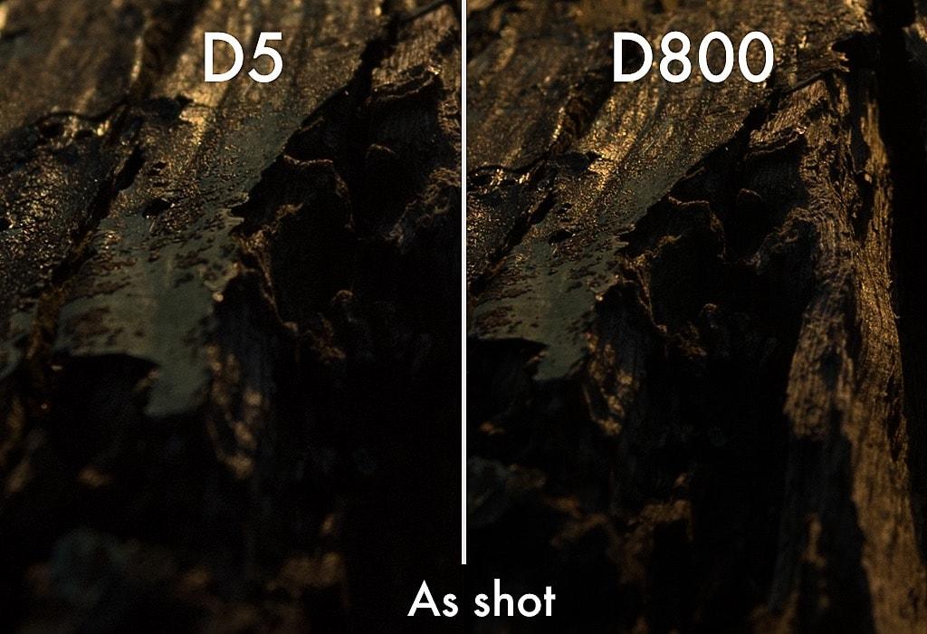 D5vsD800_DR_Test_02_AsShot