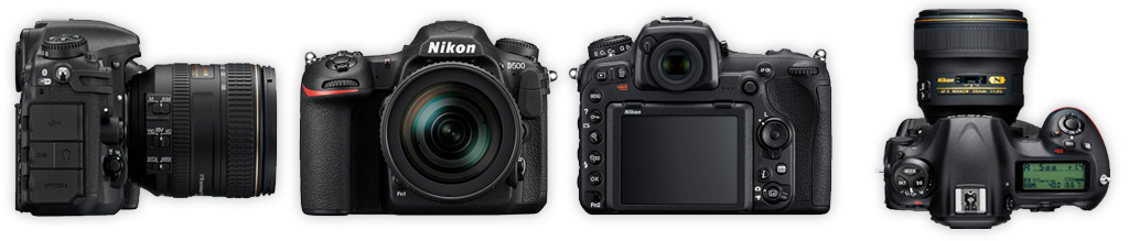 Nikon D500 camera body for wildlife photography, review by Richard Costin