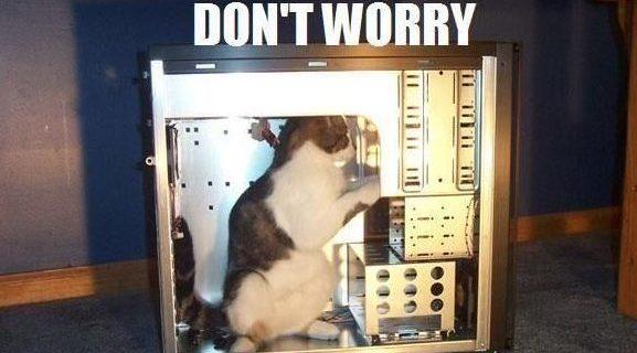 tech support cat meme