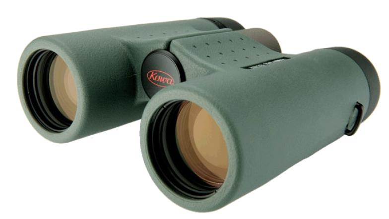 kowa binocular review by wildlife photographer Richard Costin