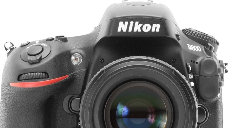nikon d800 dslr camera review by wildlife photographer richard costin