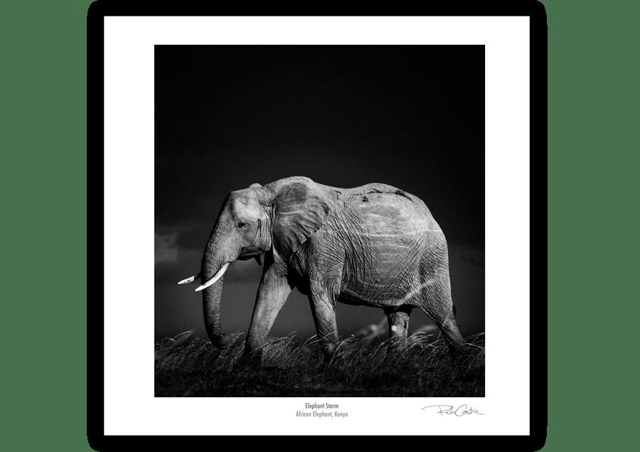 Elephant Storm, African Fine Art Wildlife Photography Print