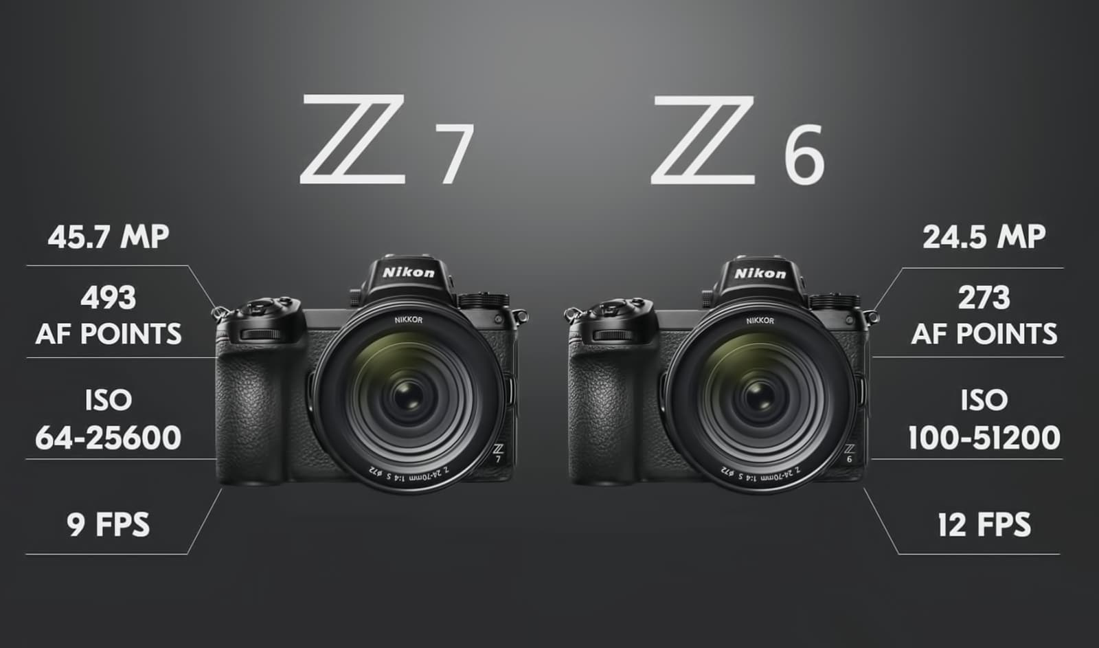 The new Z6 and Z7 mirrorless cameras from Nikon. Wildlife Photographer Richard Costin has a hands on preview with the Z7.