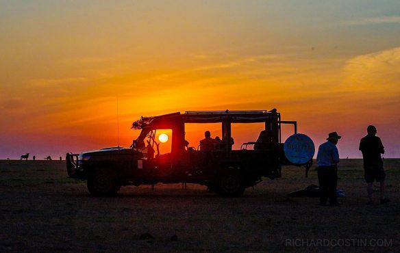 Wildlife Photography Safari - Big Cats of the Masai Mara, 2020