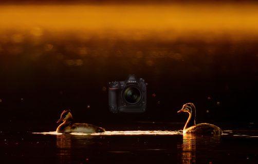 Nikon D6 DSLR, Hands on test.